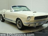 1966 Ford, Mustang
