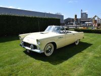 1955 Ford, Thunderbird